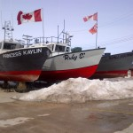 "Traditional Lake Winnipeg fishing boats, which bring in a catch of tons of freshwater pickerel and whitefish per year during 3 fishing periods (spring, fall, winter) and contribute to the local economy. The delicacy ""Goldeye"" is a local favourite."